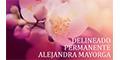 Clínicas De Belleza-DELINEADO-PERMANENTE-ALEJANDRA-MAYORGA-en-Coahuila-encuentralos-en-Sección-Amarilla-PLA