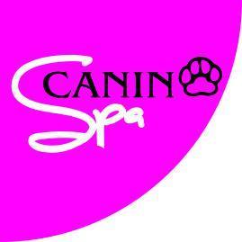 Mascotas-Venta, Accesorios Y Servicio Para-SPA-CANINO-en-Veracruz-encuentralos-en-Sección-Amarilla-BRP
