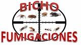 Fumigaciones-BICHO-FUMIGACIONES-en-Mexico-encuentralos-en-Sección-Amarilla-PLA