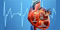 Médicos Cardiólogos-JUAREZ-CARDIOVASCULAR-en-Chihuahua-encuentralos-en-Sección-Amarilla-PLA