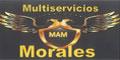 Talleres Mecánicos--MULTISERVICIOS-AUTOMOTRICES-MORALES-en-Nuevo Leon-encuentralos-en-Sección-Amarilla-DIA