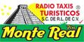 Taxis--RADIO-TAXIS-TURISTICOS-MONTE-REAL-PLUS-en-Chiapas-encuentralos-en-Sección-Amarilla-PLA