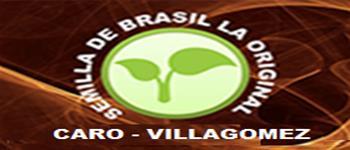 Nutrición-Productos Y Asesoría De-SEMILLA-DE-BRASIL-LA-ORIGINAL-CARO-VILLAGOMEZ-en-Mexico-encuentralos-en-Sección-Amarilla-SPN