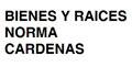 Bienes Raíces--BIENES-Y-RAICES-NORMA-CARDENAS-en-Guanajuato-encuentralos-en-Sección-Amarilla-BRP