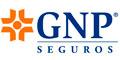 Seguros-Agentes De-GNP-SEGUROS-en-Chihuahua-encuentralos-en-Sección-Amarilla-SPN