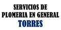 Plomerías Y Artículos Para-SERVICIOS-DE-PLOMERIA-EN-GENERAL-TORRES-en-Michoacan-encuentralos-en-Sección-Amarilla-BRP