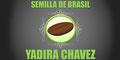 Nutrición-Productos Y Asesoría De-SEMILLA-DE-BRASIL-YADIRA-CHAVEZ-en-Sonora-encuentralos-en-Sección-Amarilla-SPN
