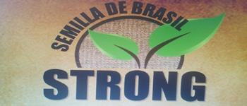 Nutrición-Productos Y Asesoría De-SEMILLA-DE-BRASIL-STRONG-en--encuentralos-en-Sección-Amarilla-SPN
