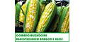 Agropecuarios-Productos-COMERCIALIZADORA-AGROPECUARIA-ARAGON-E-HIJOS-en-Mexico-encuentralos-en-Sección-Amarilla-DIA