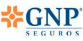 Seguros De Vida-GNP-SEGUROS-en--encuentralos-en-Sección-Amarilla-SPN