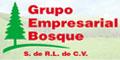 Tarimas Para Manejo De Carga-GRUPO-EMPRESARIAL-BOSQUE-S-DE-RL-DE-CV-en-Tamaulipas-encuentralos-en-Sección-Amarilla-PLA