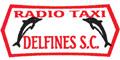 Taxis--RADIO-TAXI-DELFINES-SC-en-Veracruz-encuentralos-en-Sección-Amarilla-BRO
