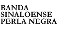Grupos Musicales, Conjuntos, Bandas Y Orquestas-BANDA-SINALOENSE-PERLA-NEGRA-en-Mexico-encuentralos-en-Sección-Amarilla-BRP