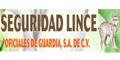 Seguridad-Sistemas De-SEGURIDAD-LINCE-en-Nuevo Leon-encuentralos-en-Sección-Amarilla-BRP