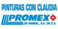 Pinturas, Barnices Y Esmaltes-Fábricas Y Expendios-PINTURAS-CON-CLAUDIA-PROMEX-DE-PARRAL-SA-DE-CV-en-Chihuahua-encuentralos-en-Sección-Amarilla-BRP