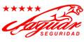 Seguridad Privada-JAGUAR-SEGURIDAD-en-Nuevo Leon-encuentralos-en-Sección-Amarilla-SPN