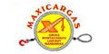 Grúas Industriales-GRUAS-MAXICARGAS-en-Nuevo Leon-encuentralos-en-Sección-Amarilla-SPN
