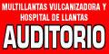Llantas, Camaras Para Automóviles Y Camiones-MULTILLANTAS-VULCANIZADORA-Y-HOSPITAL-DE-LLANTAS-AUDITORIO-en-Tamaulipas-encuentralos-en-Sección-Amarilla-BRP