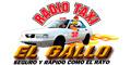 Taxis--RADIO-TAXI-EL-GALLO-en-Zacatecas-encuentralos-en-Sección-Amarilla-DIA