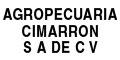 Ganado-Compra-Venta-AGROPECUARIA-CIMARRON-en-Mexico-encuentralos-en-Sección-Amarilla-BRP