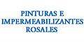 Impermeabilizantes-PINTURAS-E-IMPERMEABILIZACIONES-PROFESIONALES-ROSALES-en-Colima-encuentralos-en-Sección-Amarilla-SPN