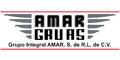 Grúas-Servicio De-AMAR-GRUAS-en-Guanajuato-encuentralos-en-Sección-Amarilla-SPN