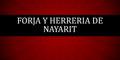 Herrerías-FORJA-Y-HERRERIA-DE-NAYARIT-en-Nayarit-encuentralos-en-Sección-Amarilla-SPN