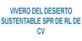 Viveros-VIVEROS-DEL-DESIERTO-SUSTENTABLE-SPR-DE-RL-DE-CV-en-Baja California Sur-encuentralos-en-Sección-Amarilla-BRP