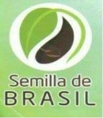 Nutrición-Productos Y Asesoría De-SEMILLA-DE-BRASIL-QRO-en-Queretaro-encuentralos-en-Sección-Amarilla-SPN