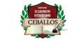Escuelas De Enseñanza Abierta-SERVICIOS-ACADEMICOS-INTEGRADOS-CEBALLOS-en-Distrito Federal-encuentralos-en-Sección-Amarilla-PLA