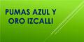 Futbol-Escuelas De-PUMAS-AZUL-Y-ORO-IZCALLI-en-Mexico-encuentralos-en-Sección-Amarilla-SPN