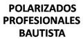 Vidrios Y Cristales-Polarizado De-POLARIZADOS-PROFESIONALES-BAUTISTA-en-Hidalgo-encuentralos-en-Sección-Amarilla-DIA