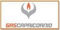Gas Combustible-GAS-CAPRICORNIO-en-Coahuila-encuentralos-en-Sección-Amarilla-BRP