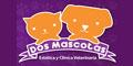Médicos Veterinarios Zootecnistas-DOS-MASCOTAS-en-Baja California-encuentralos-en-Sección-Amarilla-DIA