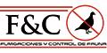Fumigaciones-CONTROL-DE-FAUNA-Y-FUMIGACIONES-en-Puebla-encuentralos-en-Sección-Amarilla-PLA