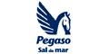 Sal-SAL-PEGASO-en-Jalisco-encuentralos-en-Sección-Amarilla-PLA