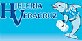 Hielo-Fábricas-HIELERIA-VERACRUZ-en-Sonora-encuentralos-en-Sección-Amarilla-SPN