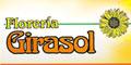 Florerías--FLORERIA-GIRASOL-en-Nuevo Leon-encuentralos-en-Sección-Amarilla-PLA