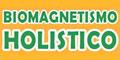 Medicina Alternativa-BIOMAGNETISMO-MEDICO-HOLOBIOMAGNETISMO-Y-TERAPIA-CUANTICA-en-Distrito Federal-encuentralos-en-Sección-Amarilla-BRP