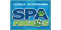 Médicos Veterinarios Zootecnistas-SPA-PERROS-en-Veracruz-encuentralos-en-Sección-Amarilla-PLA