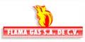 FLAMA GAS
