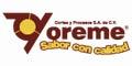 YOREME CORTES Y PROCESOS SA DE CV