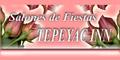SALONES DE FIESTAS TEPEYAC INN