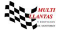 MULTILLANTAS Y SERVICIOS DE MONTERREY