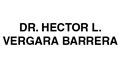 DR. HECTOR LUCIO VERGARA BARRERA