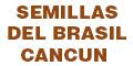 SEMILLAS DEL BRASIL CANCUN