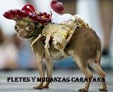 FLETES Y MUDANZAS CARAVANA